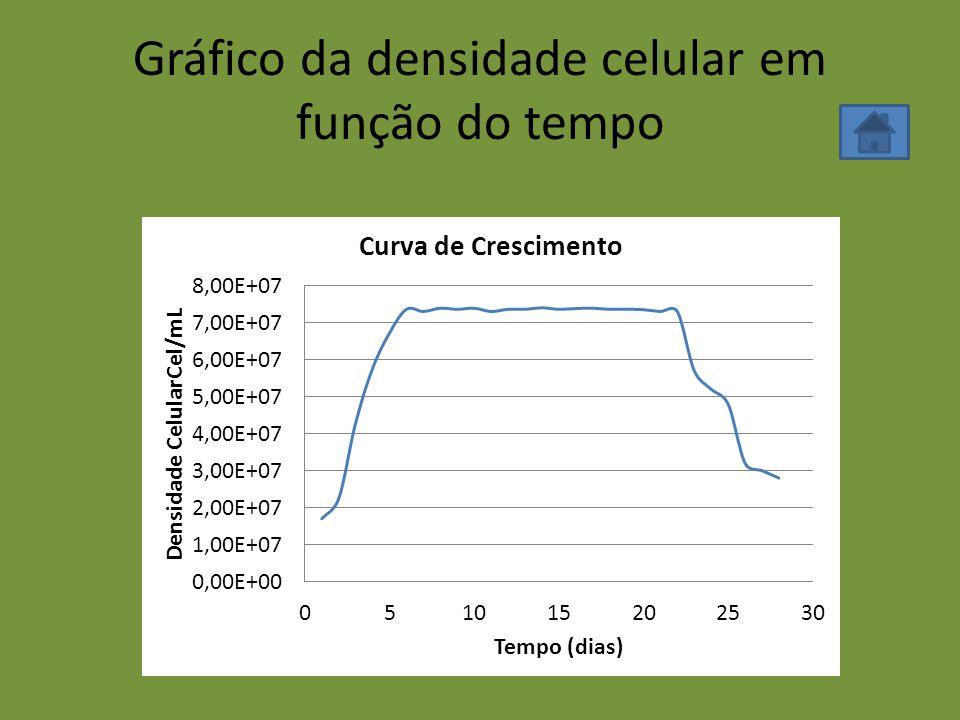 Gráfico da densidade celular em função do tempo