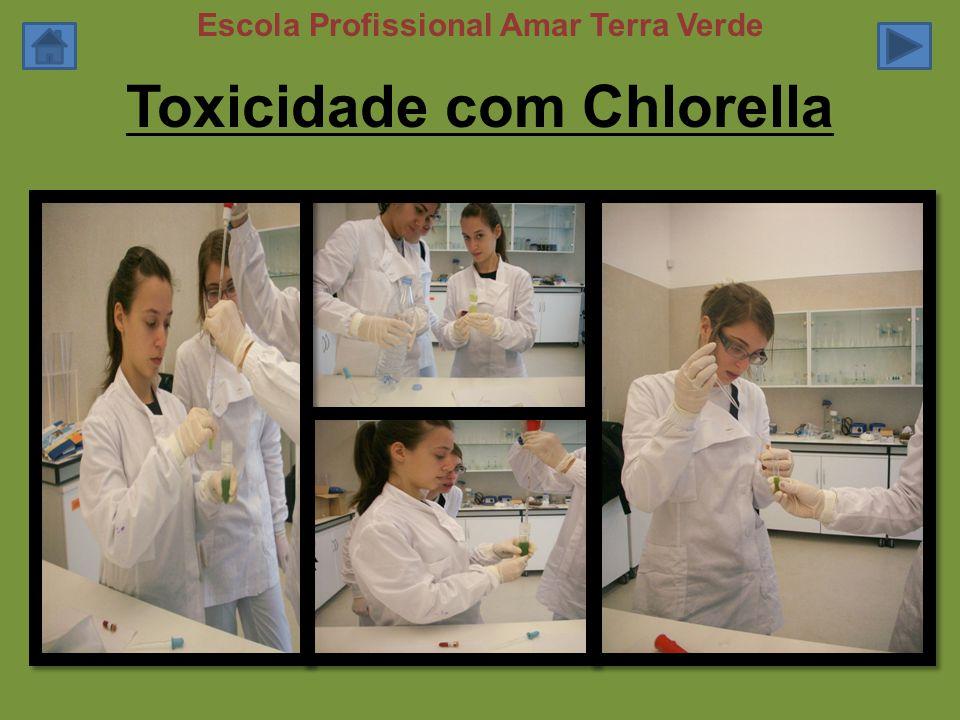 Toxicidade com Chlorella Escola Profissional Amar Terra Verde