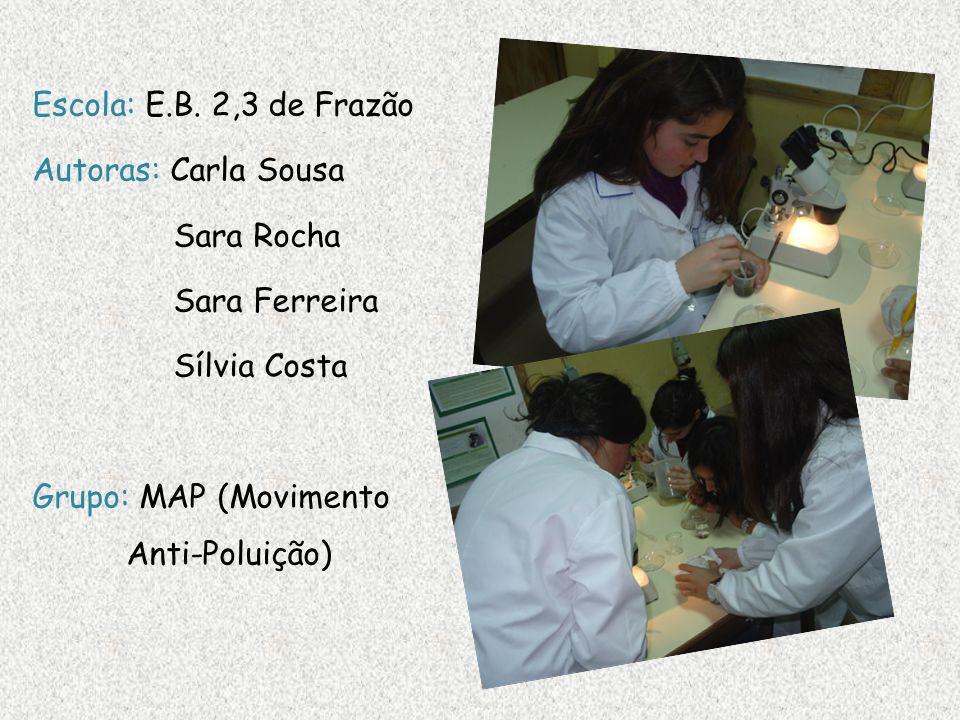 Escola: E.B. 2,3 de Frazão Autoras: Carla Sousa Sara Rocha Sara Ferreira Sílvia Costa Grupo: MAP (Movimento Anti-Poluição)