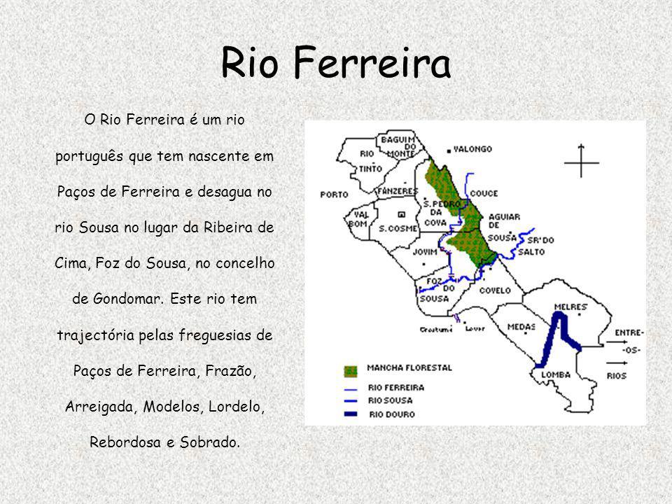 Rio Ferreira O Rio Ferreira é um rio português que tem nascente em Paços de Ferreira e desagua no rio Sousa no lugar da Ribeira de Cima, Foz do Sousa,