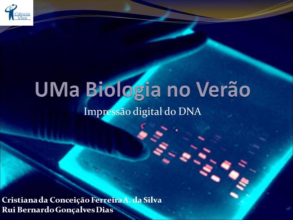 Impressão digital do DNA Cristiana da Conceição Ferreira A. da Silva Rui Bernardo Gonçalves Dias
