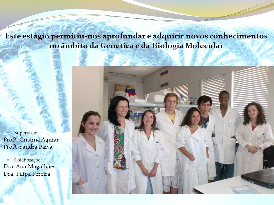 Este estágio permitiu-nos aprofundar e adquirir novos conhecimentos no âmbito da Genética e da Biologia Molecular Supervisão: Profª. Cristina Aguiar P