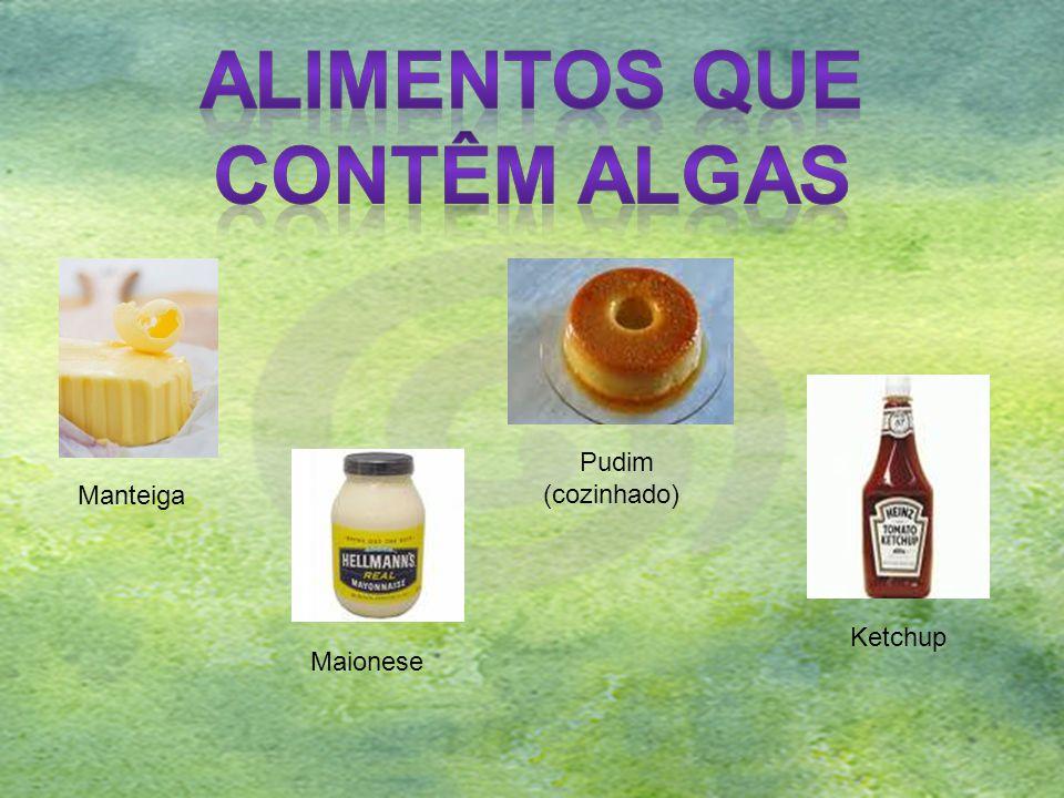 Pudim (cozinhado) Manteiga Maionese Ketchup