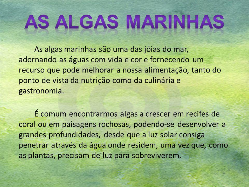 Além da sua importância ecológica, muitas espécies de algas têm importância económica para o homem.