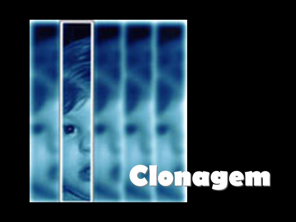 Clonagem: aspectos gerais; Tipos de Clonagem; Como se obtém um clone; Clonagem Reprodutiva; Clonagem Terapêutica; Questões Éticas.