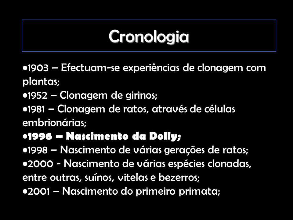 Cronologia 1903 – Efectuam-se experiências de clonagem com plantas; 1952 – Clonagem de girinos; 1981 – Clonagem de ratos, através de células embrionár
