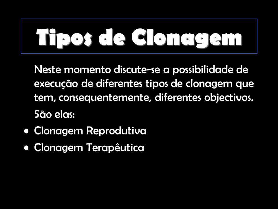 Tipos de Clonagem Neste momento discute-se a possibilidade de execução de diferentes tipos de clonagem que tem, consequentemente, diferentes objectivo