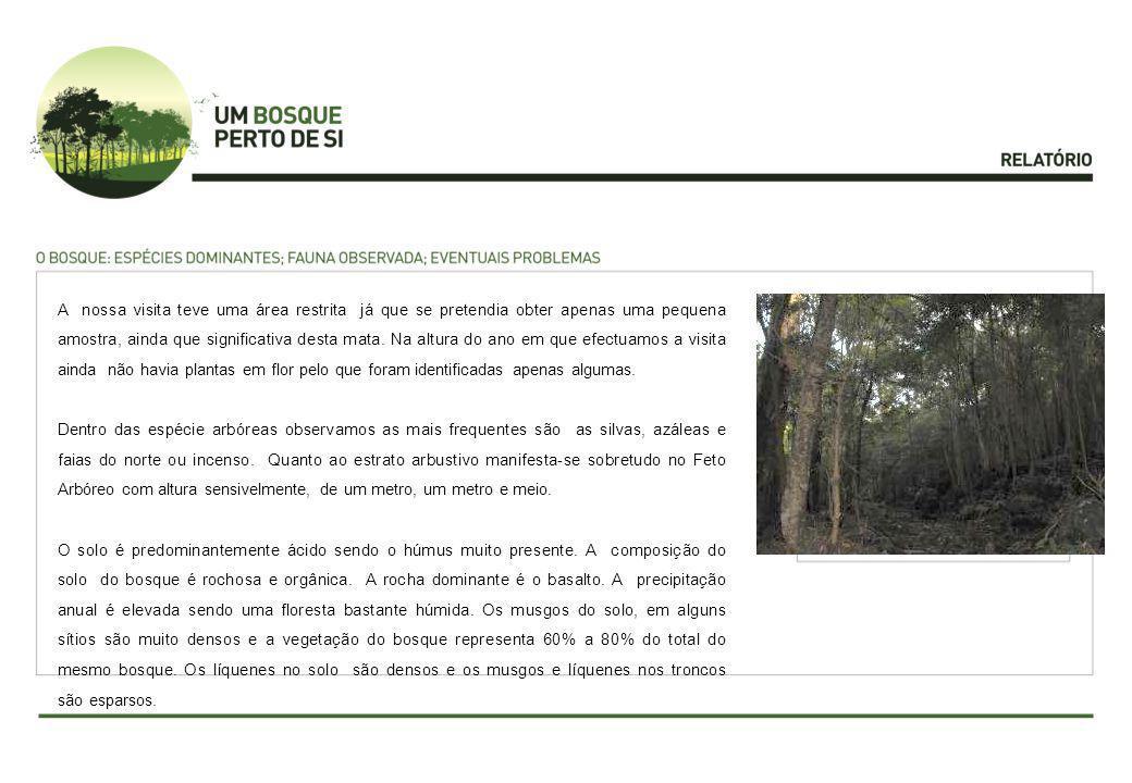 Antes da visita os formandos realizaram uma pesquisa de forma a identificar o Bosque a estudar, bem como questões de interesse relativas ao mesmo.