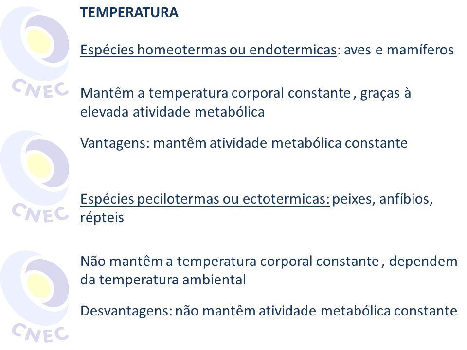 TEMPERATURA Espécies homeotermas ou endotermicas: aves e mamíferos Mantêm a temperatura corporal constante, graças à elevada atividade metabólica Vant