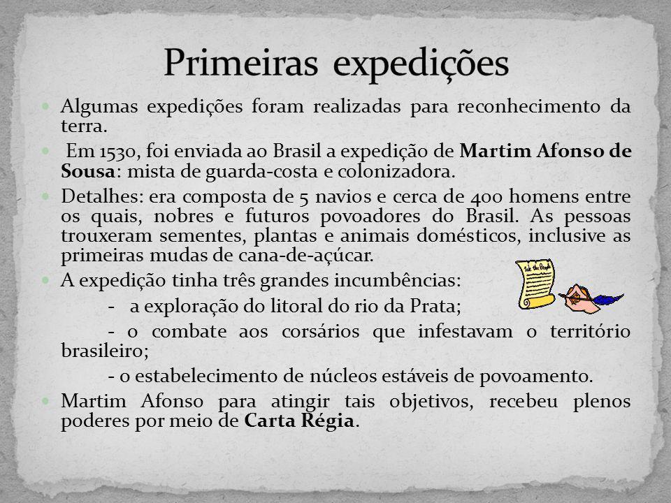Algumas expedições foram realizadas para reconhecimento da terra. Em 1530, foi enviada ao Brasil a expedição de Martim Afonso de Sousa: mista de guard