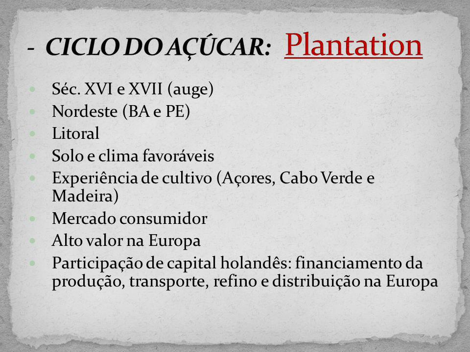 Séc. XVI e XVII (auge) Nordeste (BA e PE) Litoral Solo e clima favoráveis Experiência de cultivo (Açores, Cabo Verde e Madeira) Mercado consumidor Alt