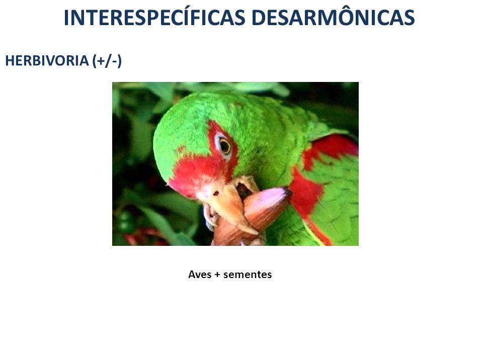 INTERESPECÍFICAS DESARMÔNICAS HERBIVORIA (+/-) Aves + sementes