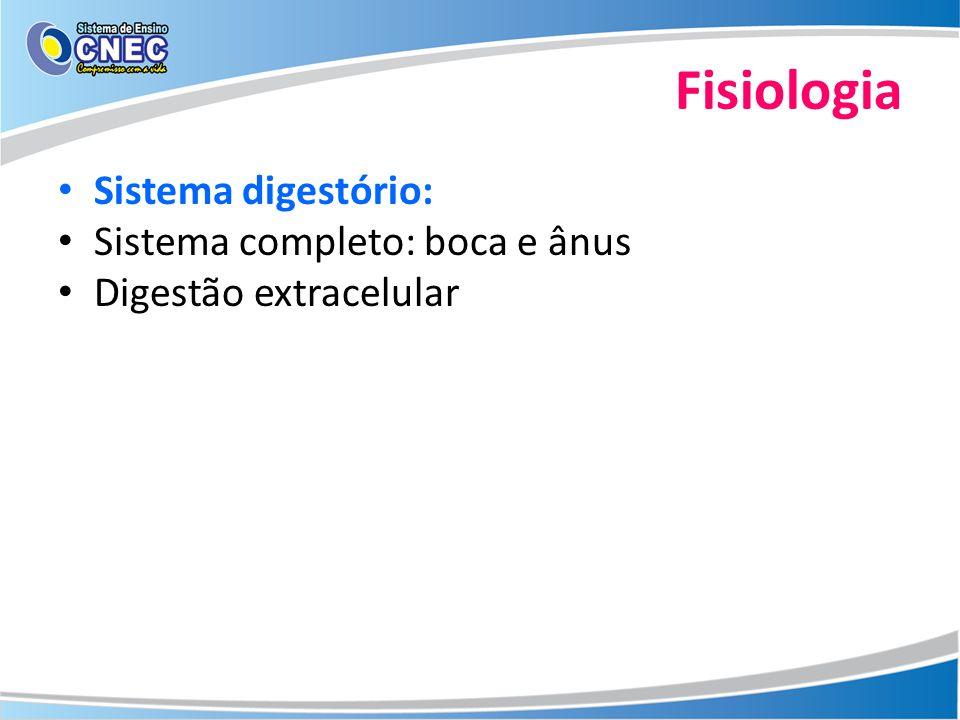 Fisiologia Sistema digestório: Sistema completo: boca e ânus Digestão extracelular