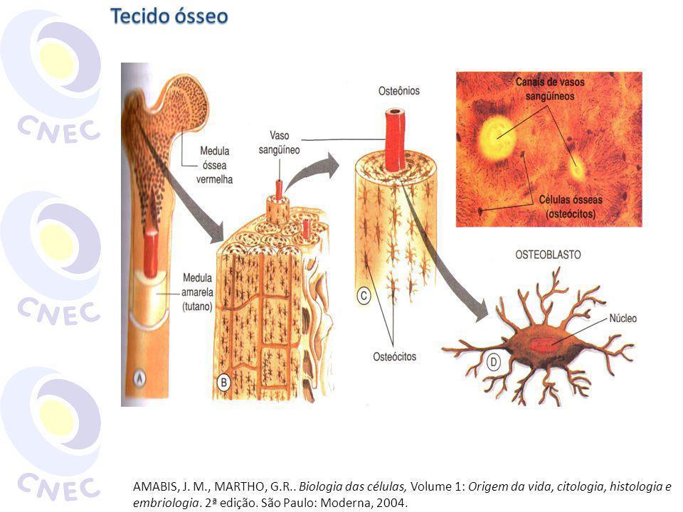 AMABIS, J. M., MARTHO, G.R.. Biologia das células, Volume 1: Origem da vida, citologia, histologia e embriologia. 2ª edição. São Paulo: Moderna, 2004.