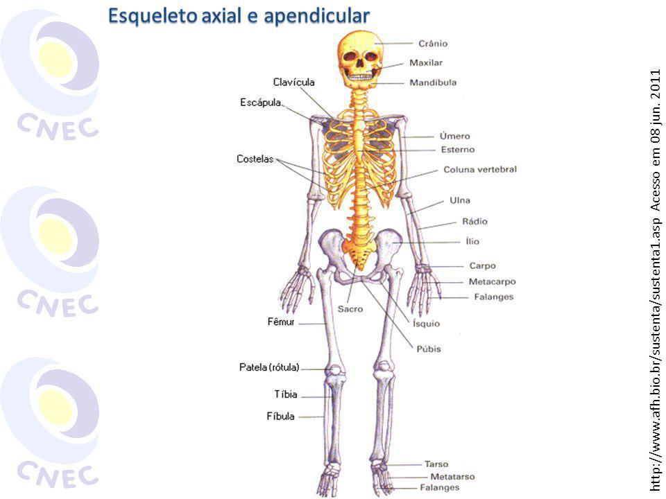 http://www.afh.bio.br/sustenta/sustenta1.asp Acesso em 08 jun. 2011