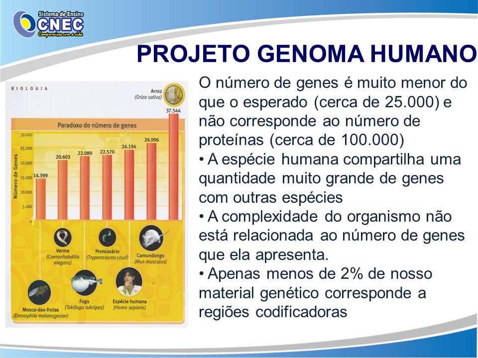 O número de genes é muito menor do que o esperado (cerca de 25.000) e não corresponde ao número de proteínas (cerca de 100.000) A espécie humana compa