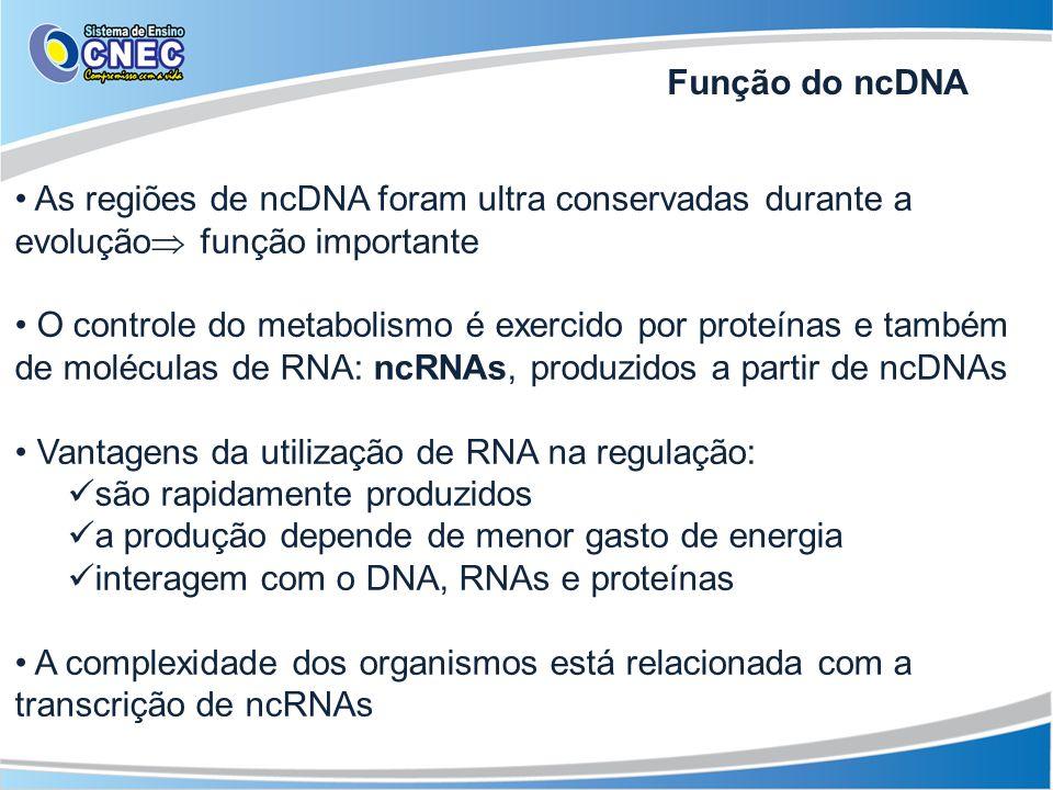 As regiões de ncDNA foram ultra conservadas durante a evolução função importante O controle do metabolismo é exercido por proteínas e também de molécu