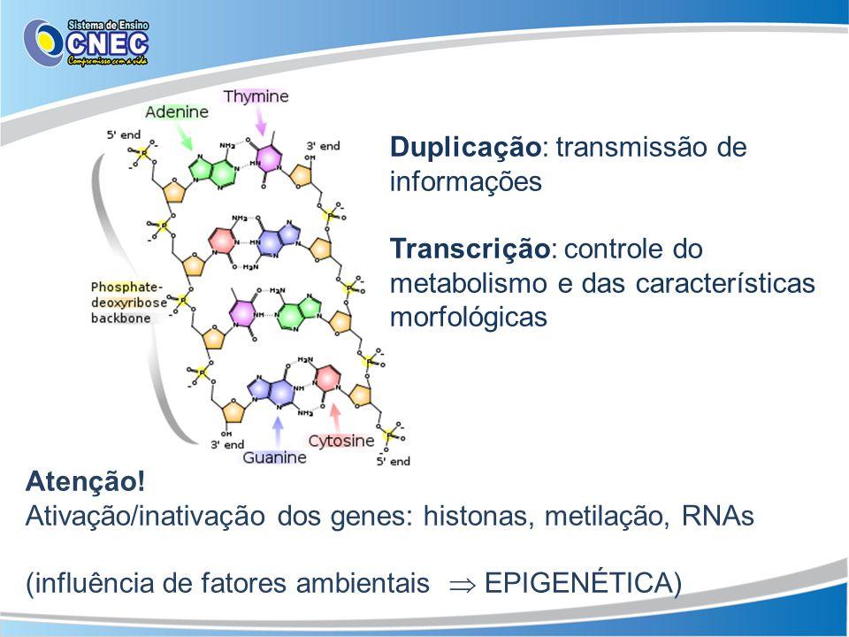 Atenção! Ativação/inativação dos genes: histonas, metilação, RNAs (influência de fatores ambientais EPIGENÉTICA) Duplicação: transmissão de informaçõe