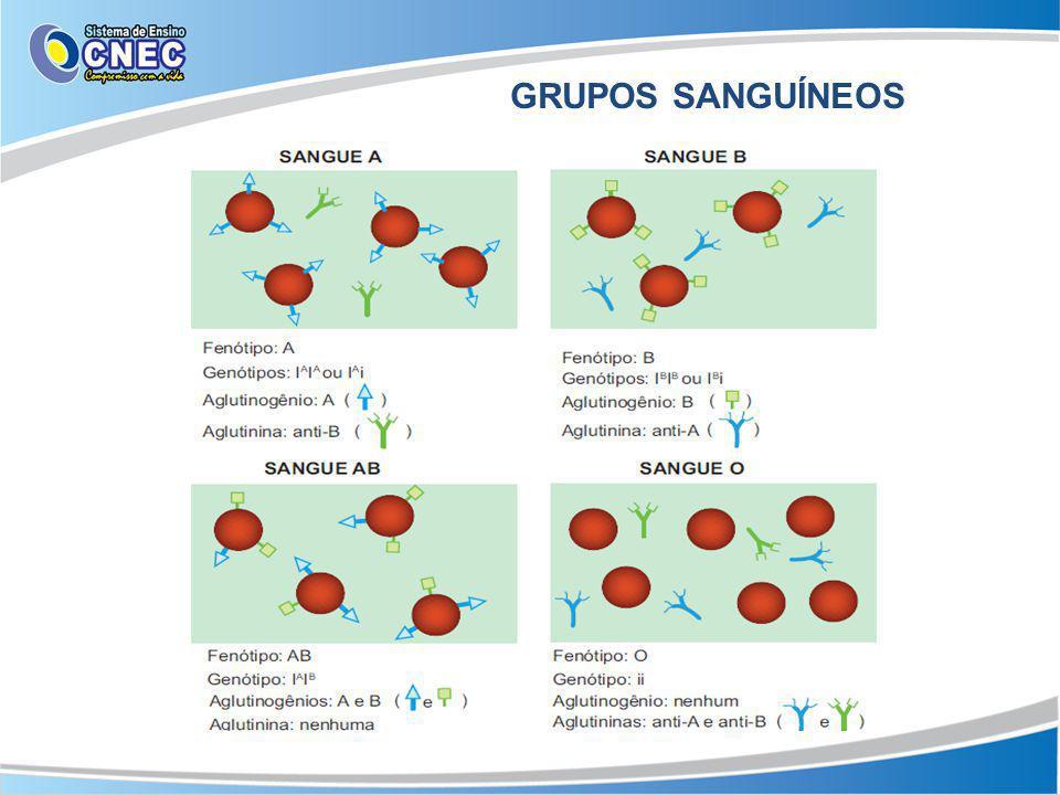 GRUPOS SANGUÍNEOS