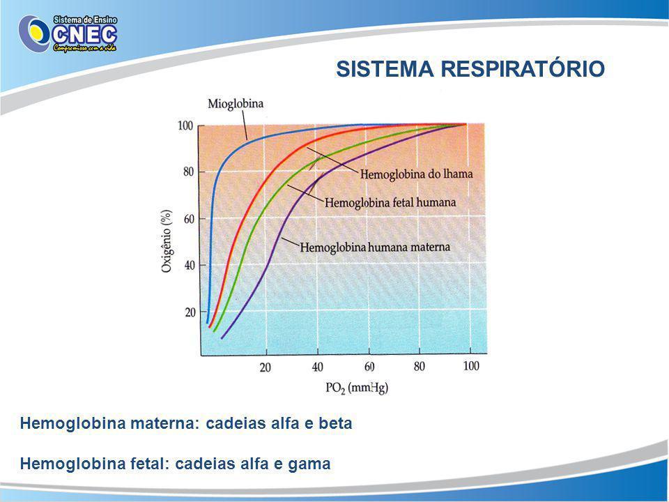 SISTEMA RESPIRATÓRIO Hemoglobina materna: cadeias alfa e beta Hemoglobina fetal: cadeias alfa e gama