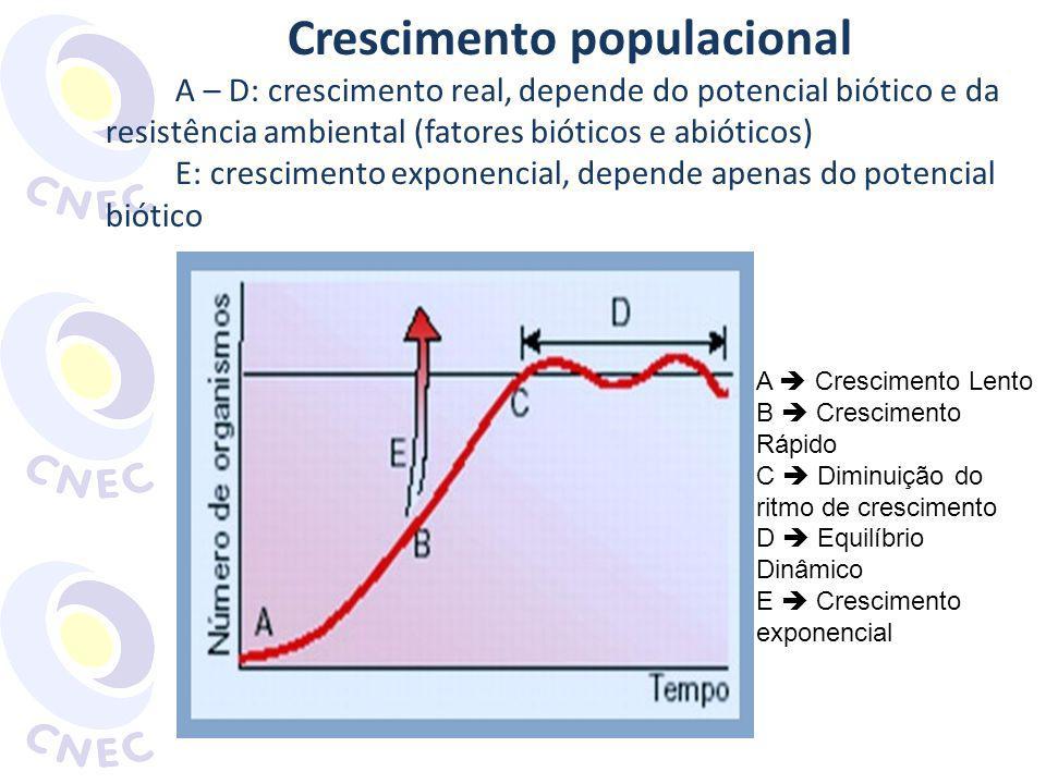 A Crescimento Lento B Crescimento Rápido C Diminuição do ritmo de crescimento D Equilíbrio Dinâmico E Crescimento exponencial Crescimento populacional A – D: crescimento real, depende do potencial biótico e da resistência ambiental (fatores bióticos e abióticos) E: crescimento exponencial, depende apenas do potencial biótico
