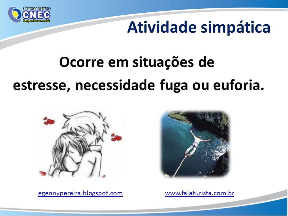 Atividade simpática Ocorre em situações de estresse, necessidade fuga ou euforia. egennypereira.blogspot.comwww.falaturista.com.br