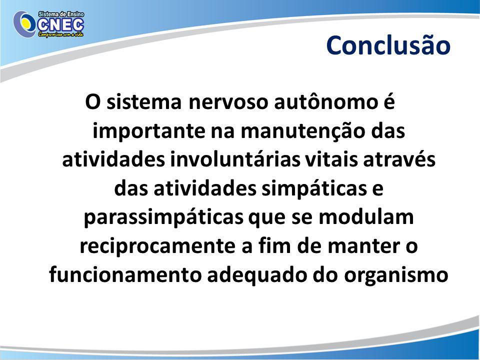 Conclusão O sistema nervoso autônomo é importante na manutenção das atividades involuntárias vitais através das atividades simpáticas e parassimpática