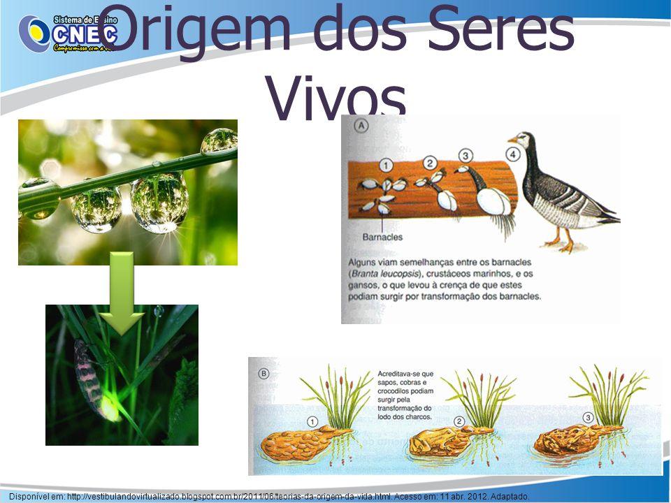 Origem dos Seres Vivos Disponível em: http://vestibulandovirtualizado.blogspot.com.br/2011/06/teorias-da-origem-da-vida.html. Acesso em: 11 abr. 2012.