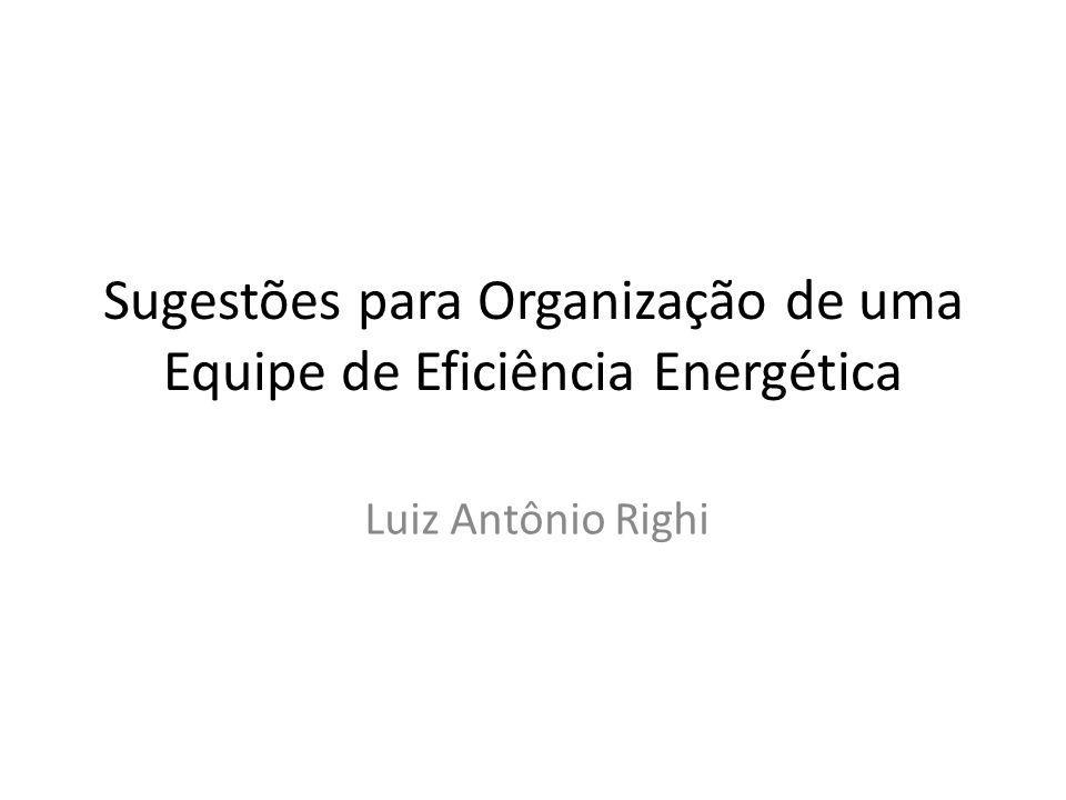 Sugestões para Organização de uma Equipe de Eficiência Energética Luiz Antônio Righi
