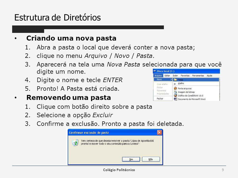 Estrutura de Diretórios Copiando um arquivo 1.Vá à pasta que tenha o arquivo que você deseja copiar; 2.selecione o arquivo; 3.clique no menu Editar/Copiar; 4.vá para a pasta de destino do arquivo e clique no menu Editar/Colar.