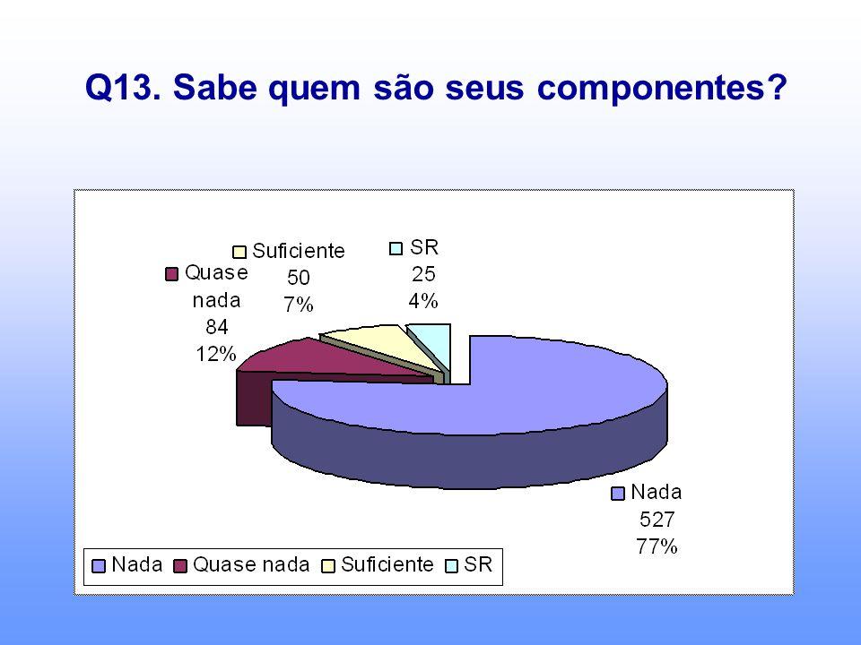 Q13. Sabe quem são seus componentes?