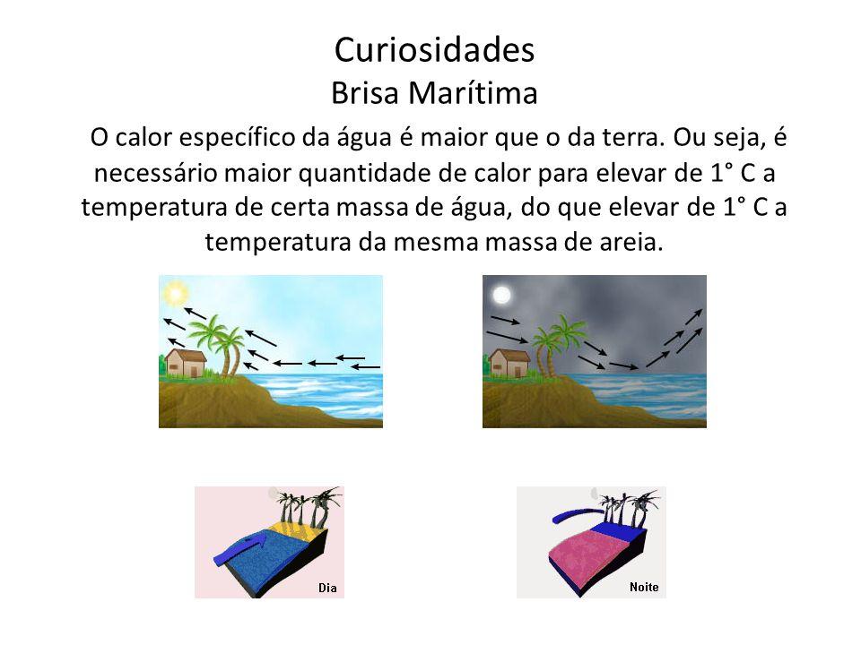 Curiosidades Brisa Marítima O calor específico da água é maior que o da terra.