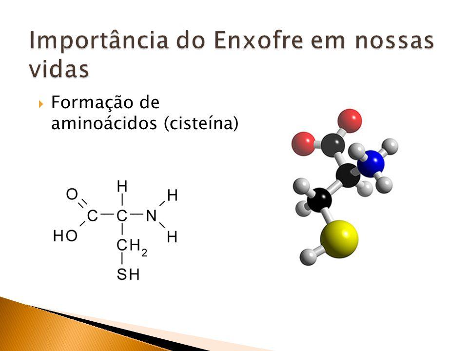 Formação de aminoácidos (cisteína)