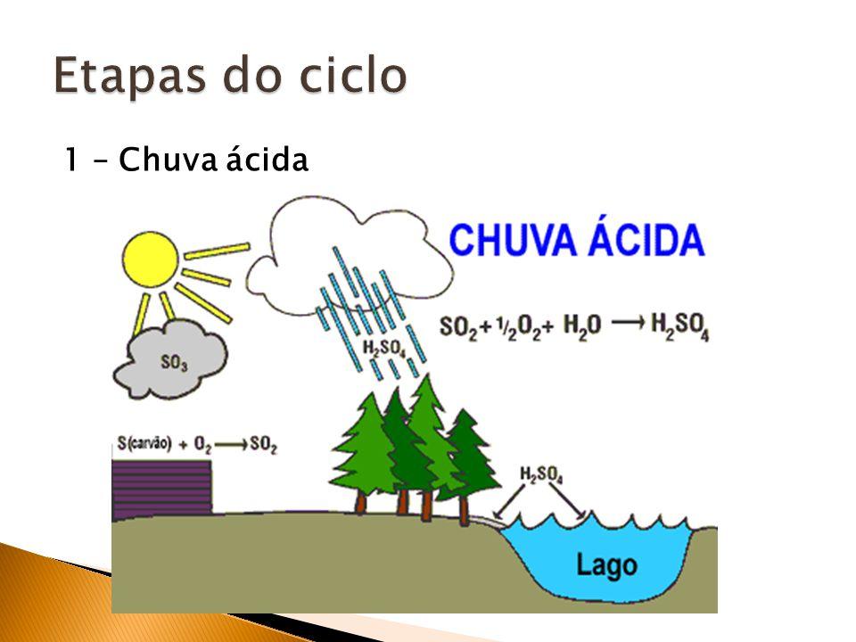1 – Chuva ácida