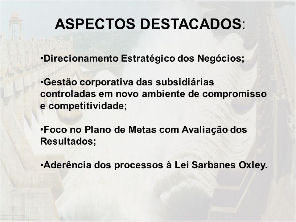 Direcionamento Estratégico dos Negócios; Gestão corporativa das subsidiárias controladas em novo ambiente de compromisso e competitividade; Foco no Plano de Metas com Avaliação dos Resultados; Aderência dos processos à Lei Sarbanes Oxley.