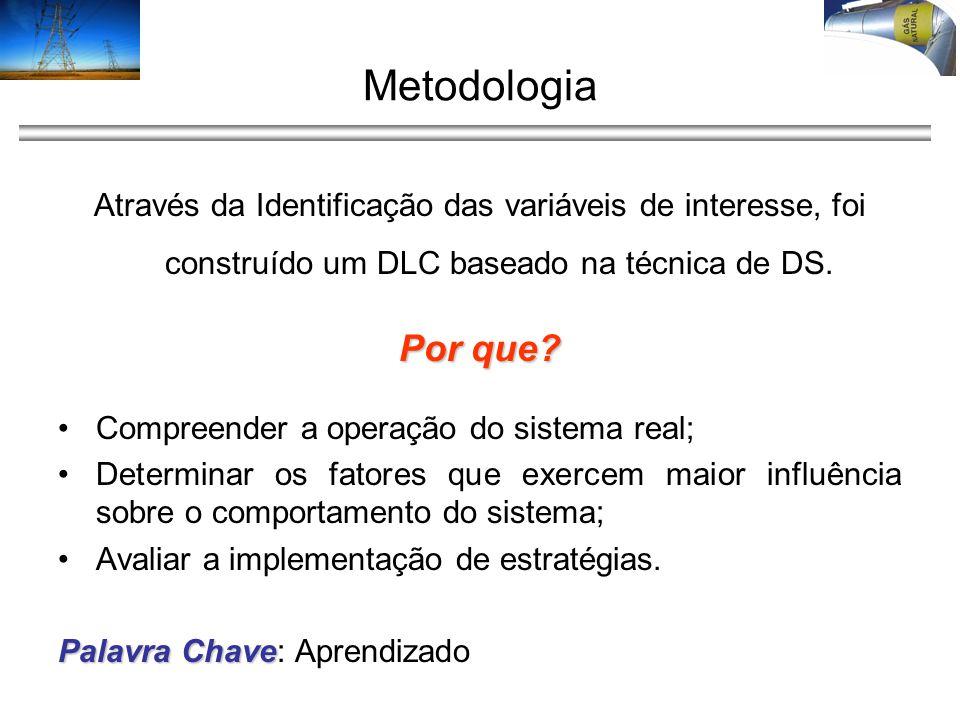 Metodologia Através da Identificação das variáveis de interesse, foi construído um DLC baseado na técnica de DS. Por que? Compreender a operação do si