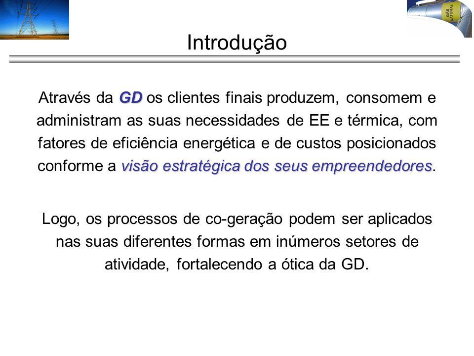Introdução GD visão estratégica dos seus empreendedores Através da GD os clientes finais produzem, consomem e administram as suas necessidades de EE e