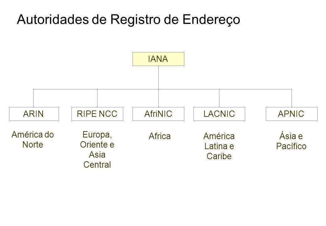Autoridades de Registro de Endereço IANA ARINRIPE NCCAfriNICLACNICAPNIC América do Norte Europa, Oriente e Asia Central AfricaAmérica Latina e Caribe Ásia e Pacífico