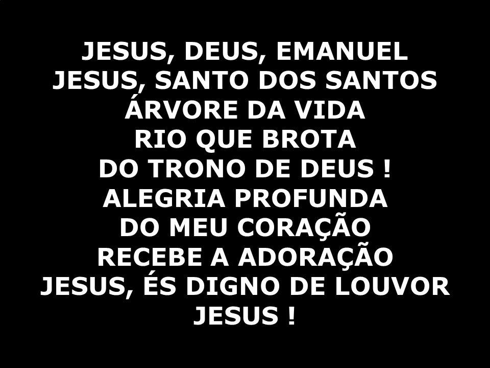 JESUS, DEUS, EMANUEL JESUS, SANTO DOS SANTOS ÁRVORE DA VIDA RIO QUE BROTA DO TRONO DE DEUS ! ALEGRIA PROFUNDA DO MEU CORAÇÃO RECEBE A ADORAÇÃO JESUS,