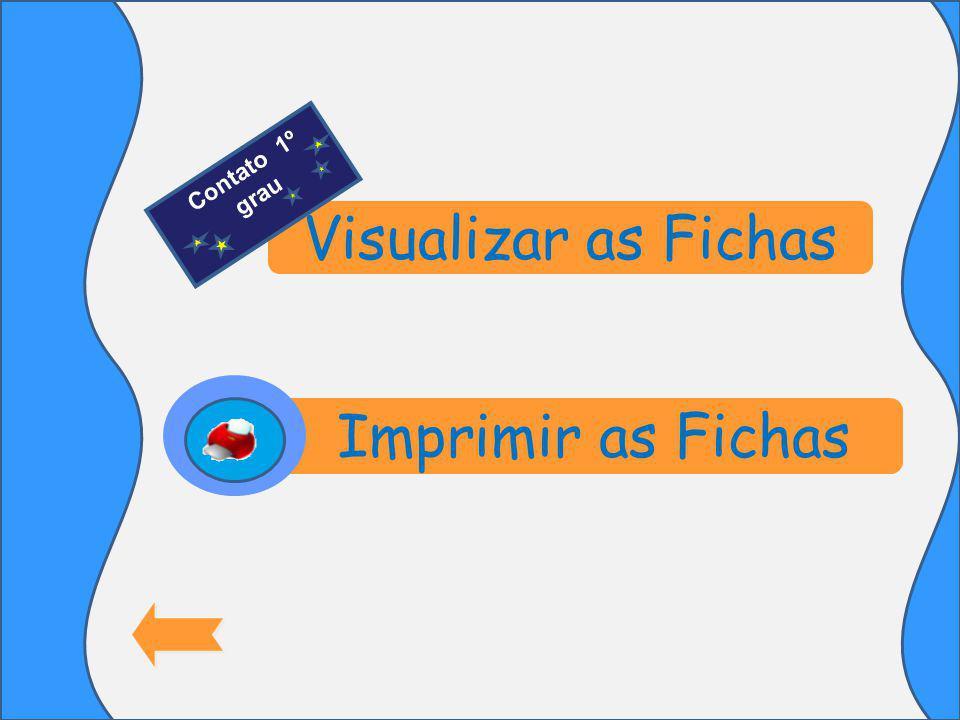 Visualizar as Fichas Imprimir as Fichas Contato 1º grau