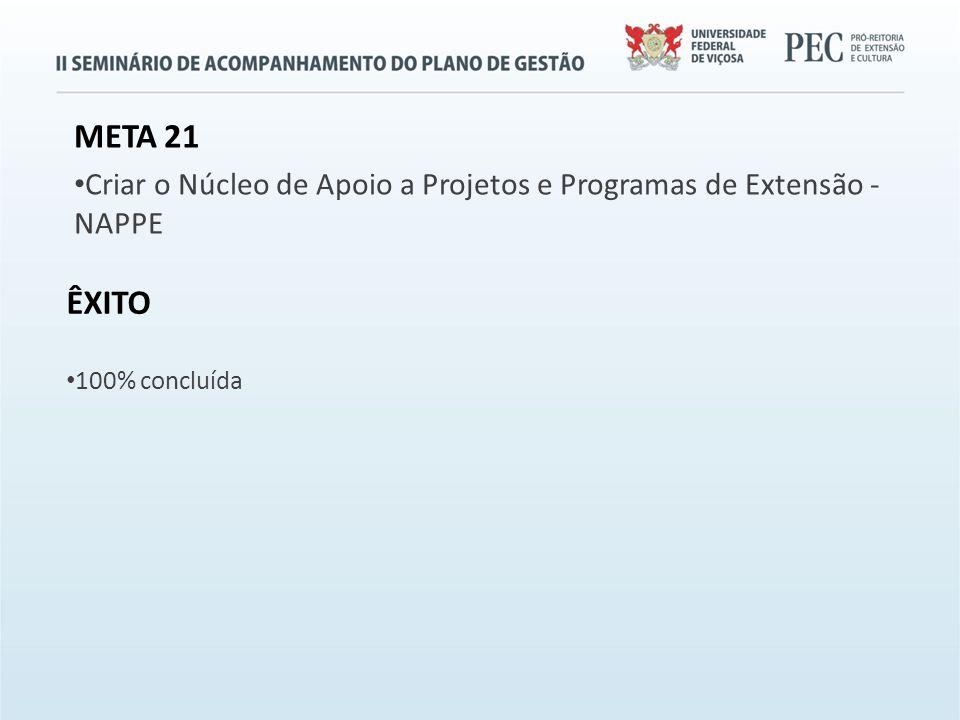 META 21 Criar o Núcleo de Apoio a Projetos e Programas de Extensão - NAPPE ÊXITO 100% concluída