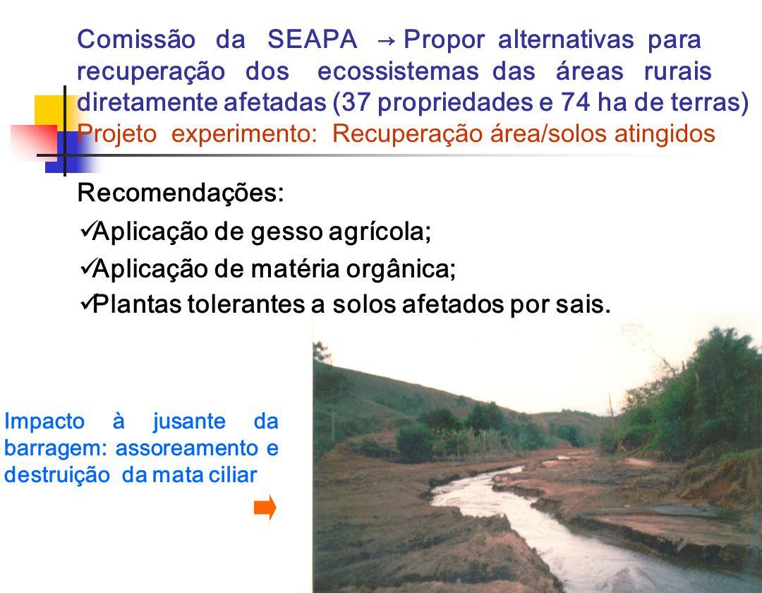 Recomendações: Comissão da SEAPA Propor alternativas para recuperação dos ecossistemas das áreas rurais diretamente afetadas (37 propriedades e 74 ha