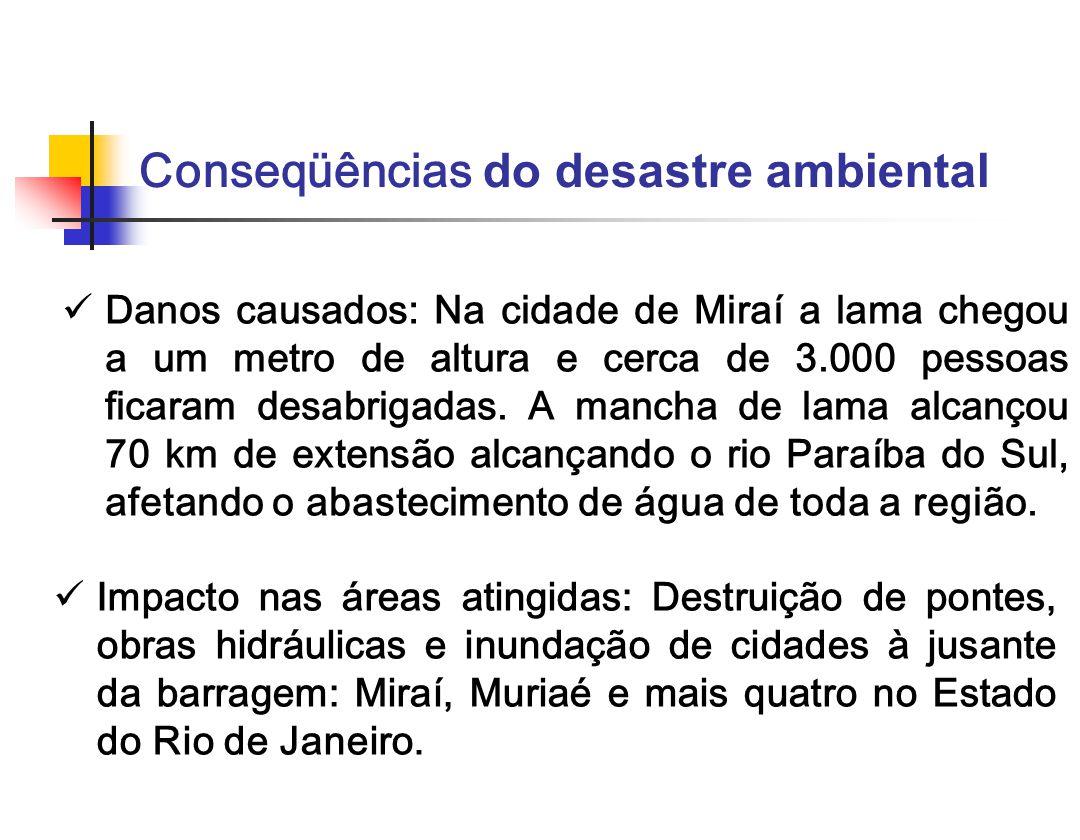 Danos causados: Na cidade de Miraí a lama chegou a um metro de altura e cerca de 3.000 pessoas ficaram desabrigadas. A mancha de lama alcançou 70 km d