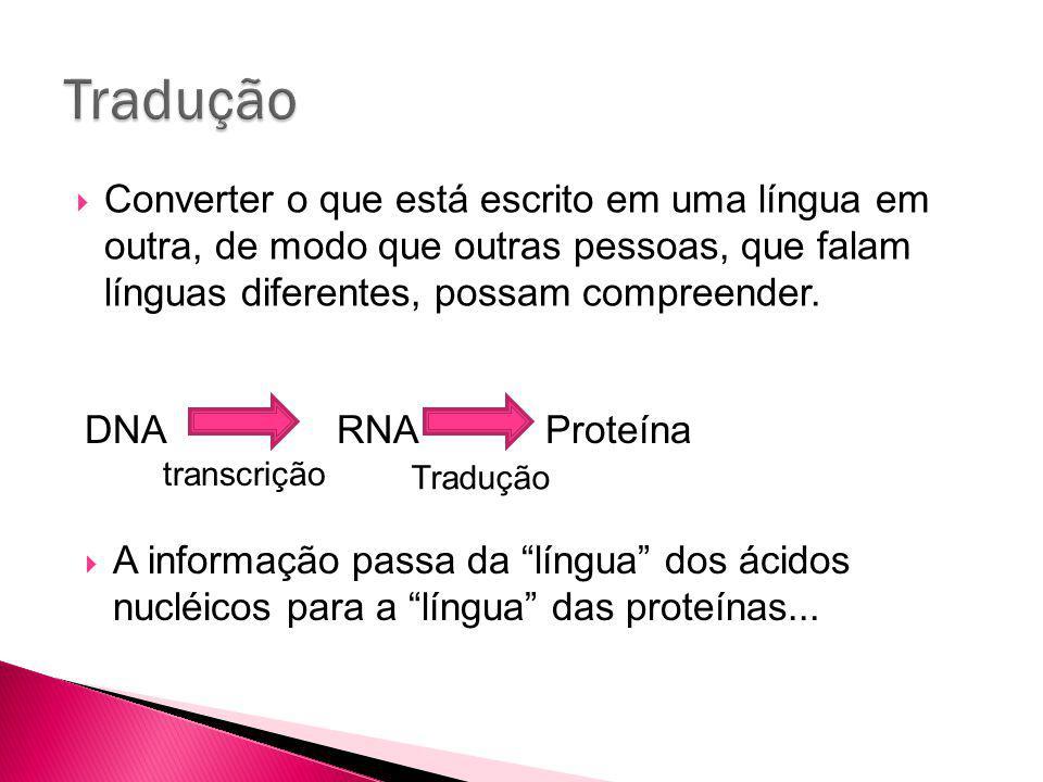 Converter o que está escrito em uma língua em outra, de modo que outras pessoas, que falam línguas diferentes, possam compreender.