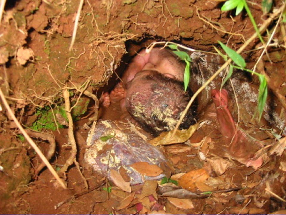 Os policiais foram acionados através de uma denúncia anônima para darem atendimento a uma ocorrência de abandono de criança enterrada num matagal.