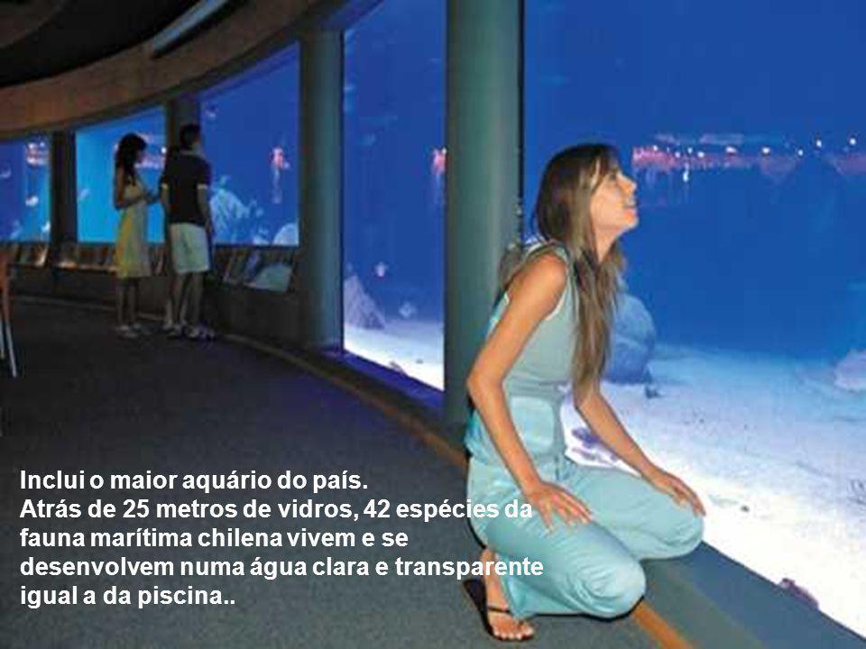 O criador da piscina gigante, é também o administrador das atividades dos moradores e não deixou nada ao acaso.