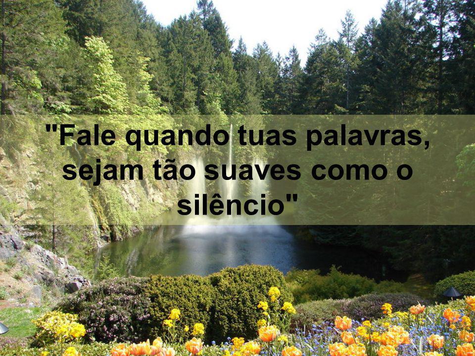 Quando magoamos com nossas ações ou com nossas palavras, logo queremos consertar o erro, mas muitas vezes é tarde demais. Alguém disse, certa vez: