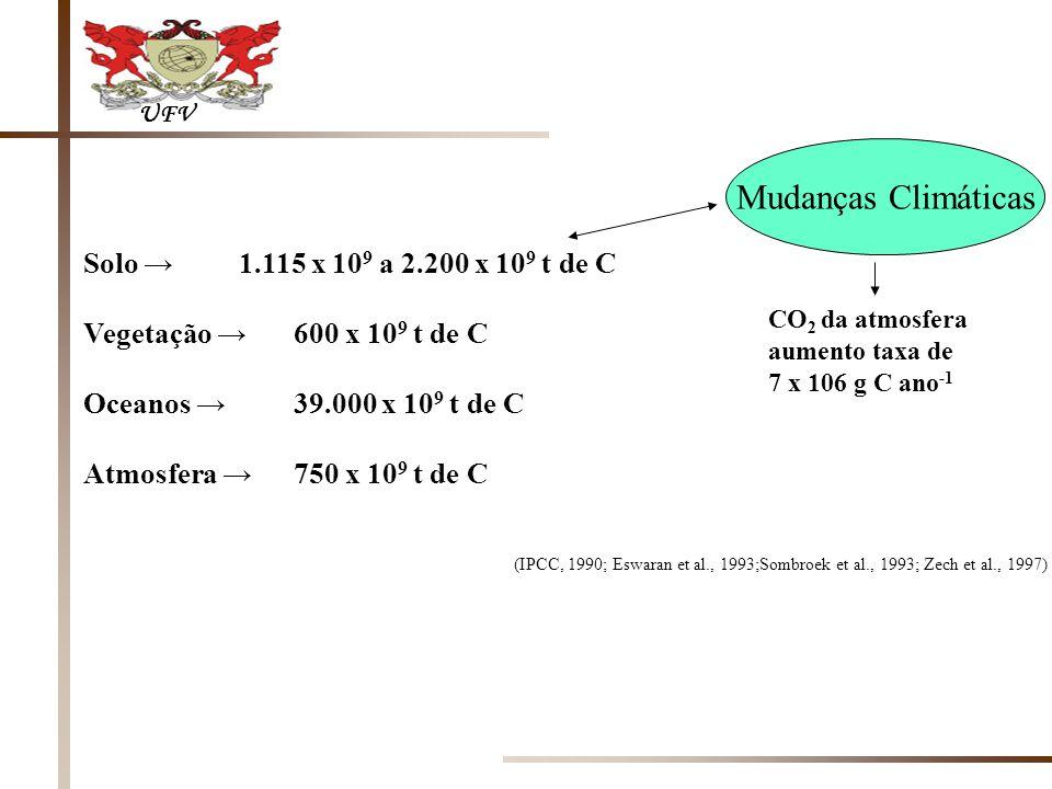 UFV Solo 1.115 x 10 9 a 2.200 x 10 9 t de C Vegetação 600 x 10 9 t de C Oceanos 39.000 x 10 9 t de C Atmosfera 750 x 10 9 t de C (IPCC, 1990; Eswaran et al., 1993;Sombroek et al., 1993; Zech et al., 1997) Mudanças Climáticas CO 2 da atmosfera aumento taxa de 7 x 106 g C ano -1