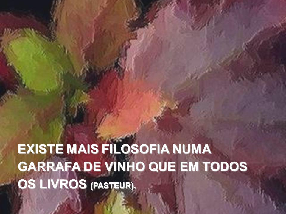 O VINHO Joaquim G Pereira