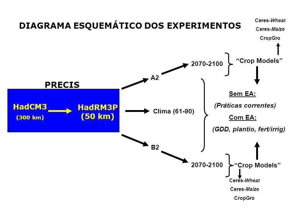 DIAGRAMA ESQUEMÁTICO DOS EXPERIMENTOS HadCM3 (300 km) A2 B2 2070-2100 Crop Models 2070-2100 Crop Models Sem EA: (Práticas correntes) Com EA: (GDD, pla
